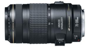 Canon EF70 - 300mm f/4-5.6 IS USM